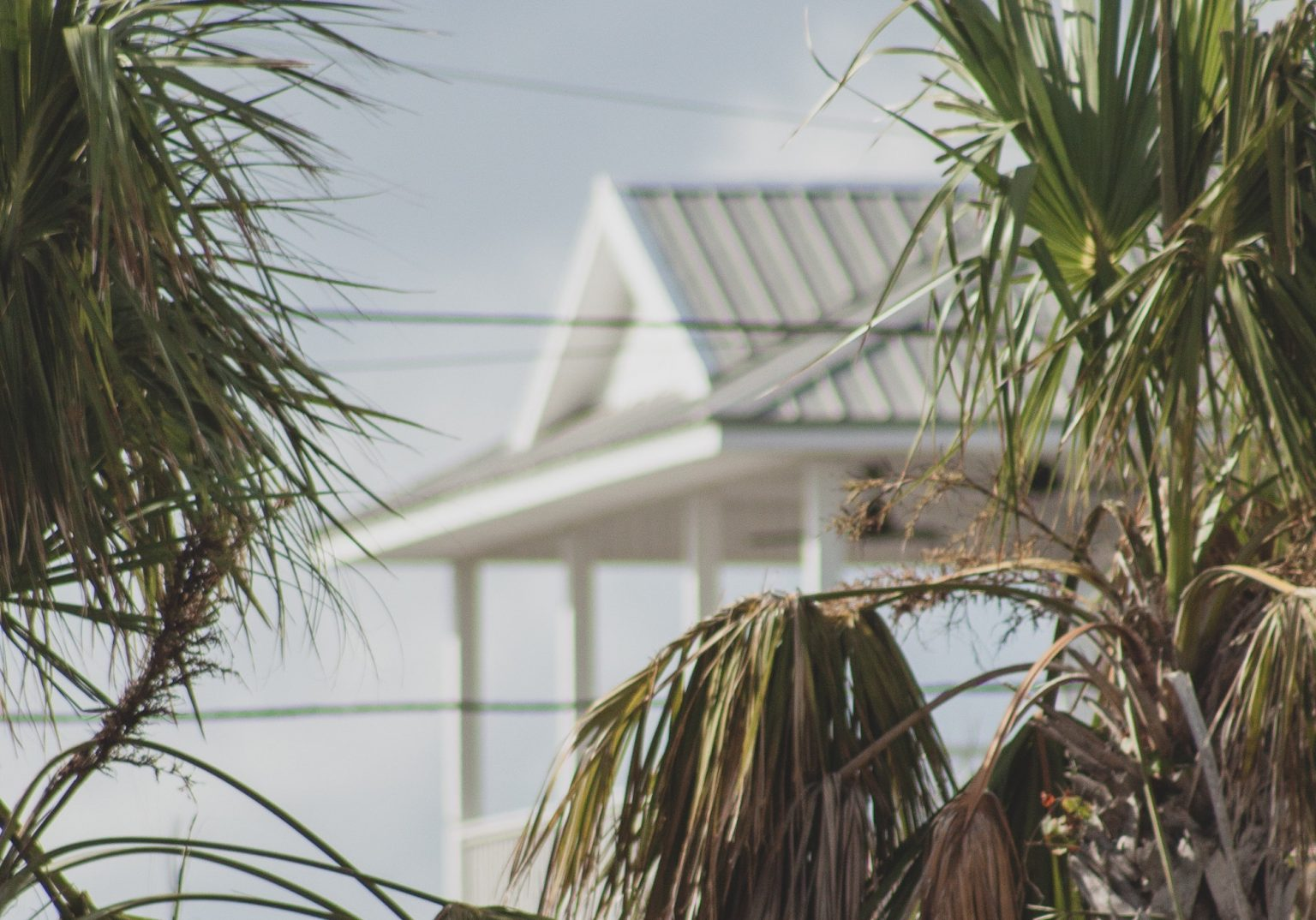 A picture of a house in the background with palm trees in the foreground, indicating that the house is built in Florida.