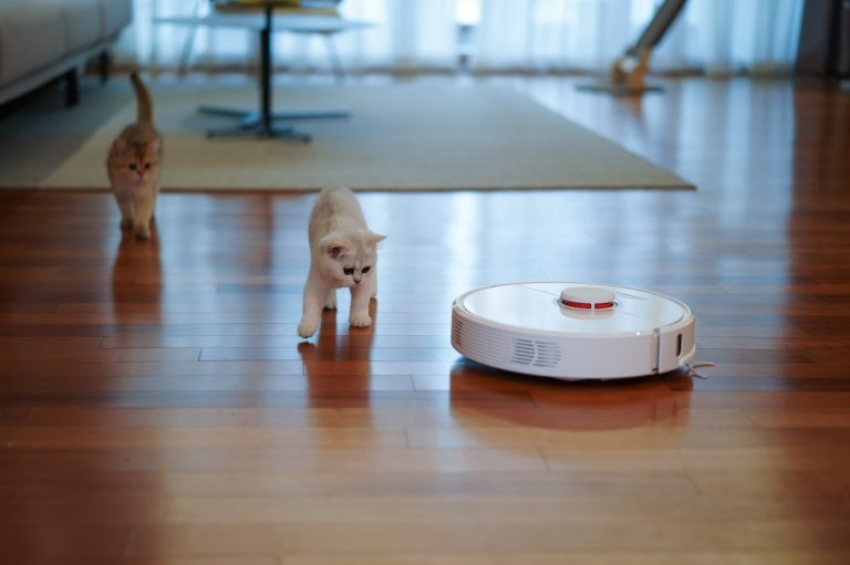 Two kitties chase the robot vaccum around the living room with reddish hardwood floors.