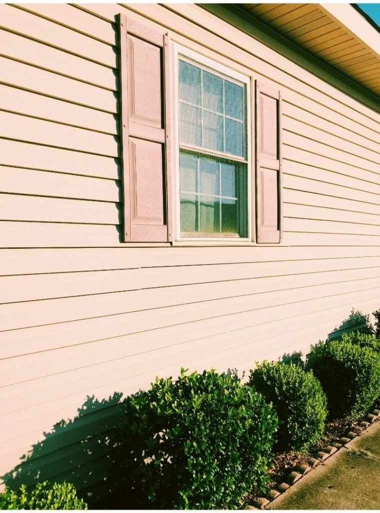 Photo of an exterior house wall with beige siding and a window with small green shrubs below.