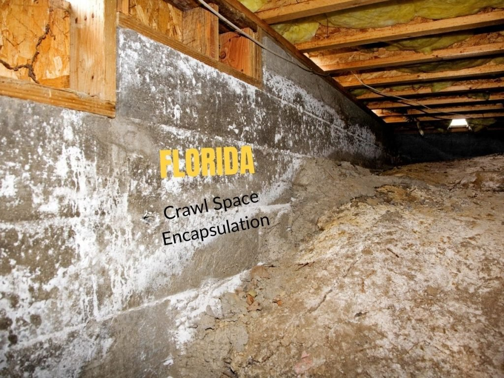 Photo of a crawl space under a house with the caption Florida Crawl Space Encapsulation
